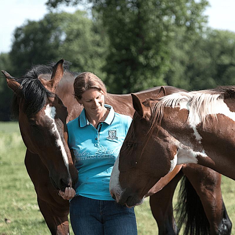 digitale gids geheim goed met paarden - dorienlambrechts.com